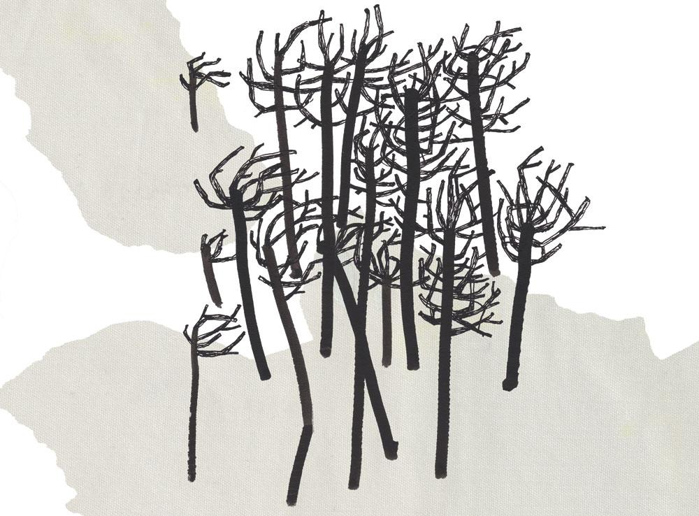 """Zeichnung """"Birken"""""""